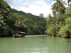 Philippines rainforest; Photo by: pixabay.com, Creative Commons Deed CC0