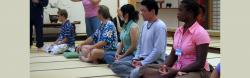 Line of exchange participants practicing sitting meditation